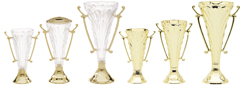 Trophies customized for your event